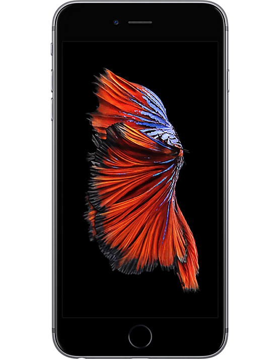 best ee iphone 6 plus deals